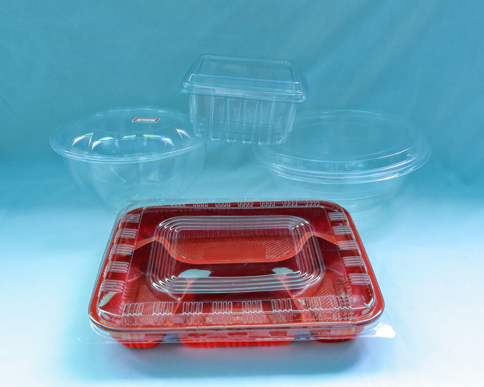 Plastic Disposable Lunch Box