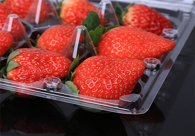 Disposable Fruit Packaging Box